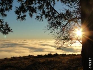 Bollerberg im Nebelmeer