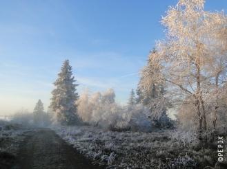 Hochheide Niedersfeld im Nebel