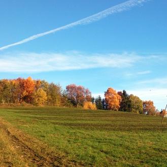 Bunte Herbstbäume in Siedlinghausen