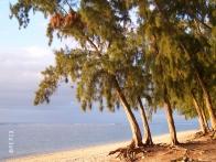 mauri_beach2